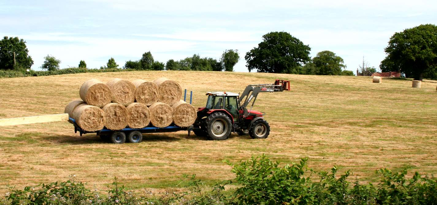 Farming in Sussex, making hay to feed the animals in winter